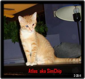 atlas2.jpg